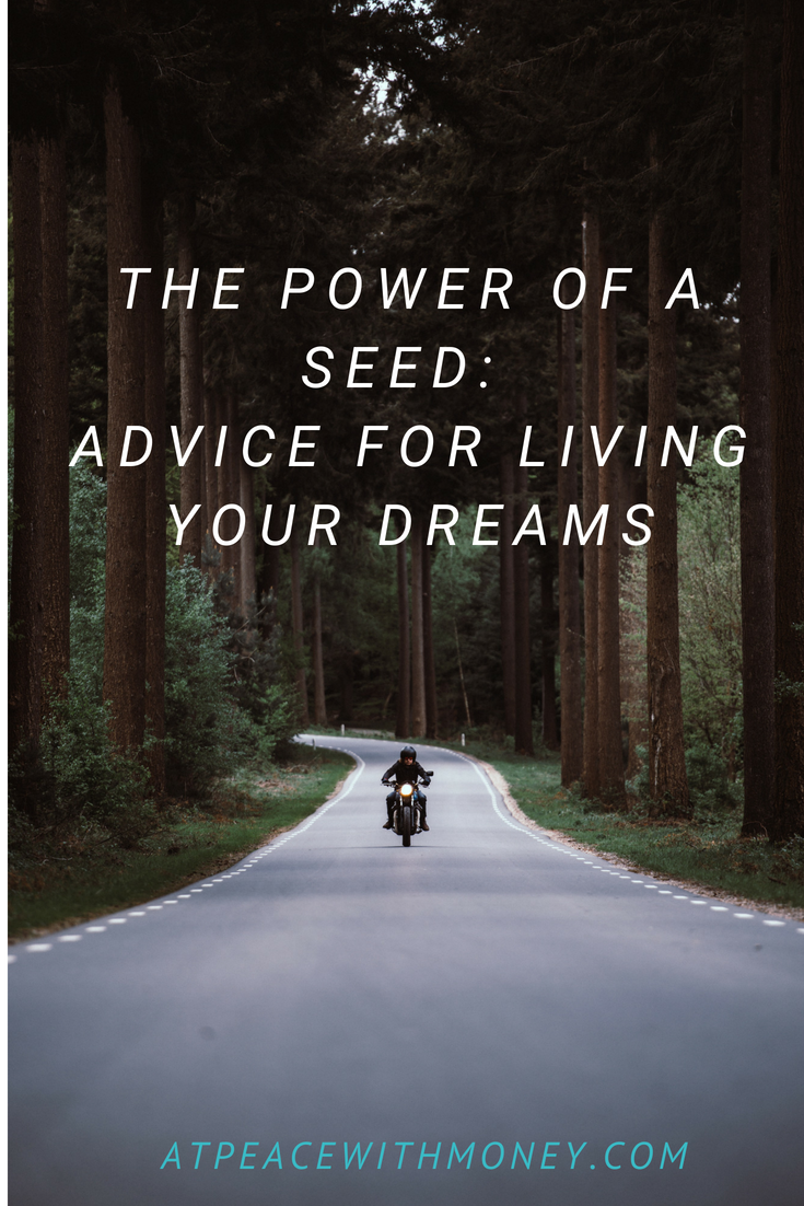 The Power of a Seed: At Peace With Money